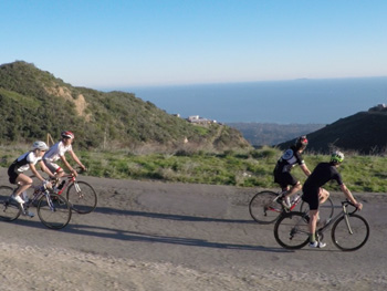 Coastal Santa Barbara Road Bike Tour - Cal Coast Adventures