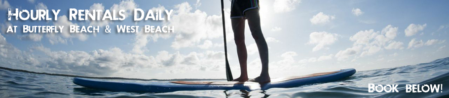 Stand Up Paddle Board Rentals Santa Barbara - Cal Coast Adventures
